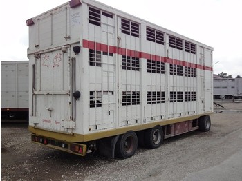 KABA 3 Stock Spindel    40km/H  - closed box trailer